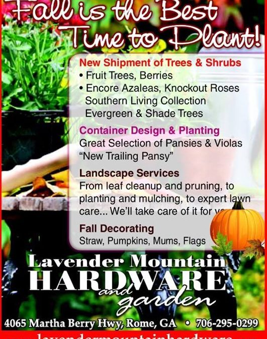 Lavender Mountain Hardware & Garden added a new photo.